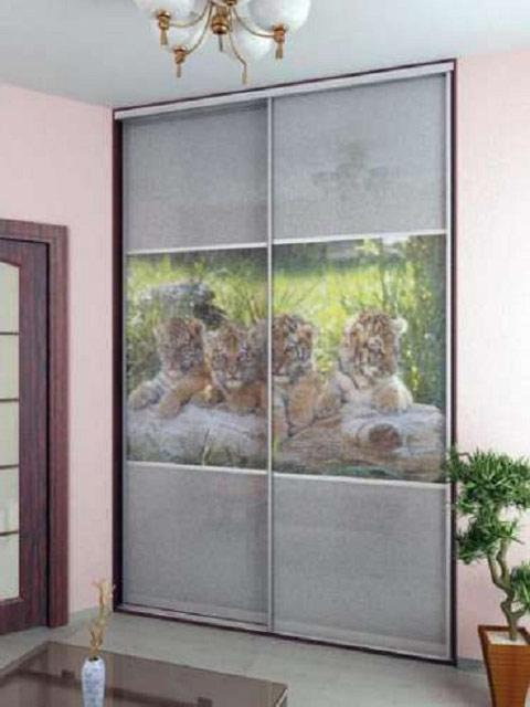 http://sv-mebli.com.ua/images/Gallery/Shkaf/shkafy-kupe-s-fotofasadami-006.jpg