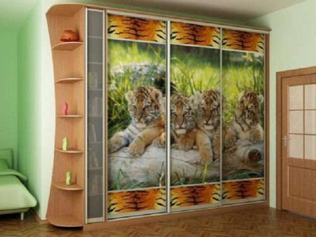 http://sv-mebli.com.ua/images/Gallery/Shkaf/shkafy-kupe-s-fotofasadami-009.jpg